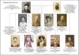 family tree researcher family tree and genealogy research home page